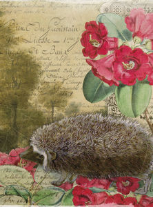 Whimsical Animals hedgehog